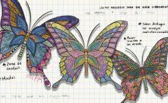 El efecto mariposa de la Educación Relacional
