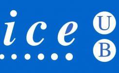 Diploma de Mentoría y Coaching en Educación del ICE (UB)